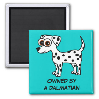 Cute Dalmatian Cartoon Owned by a Dalmtian Magnet