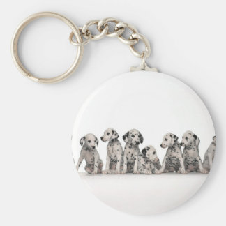 cute dalmation puppies pupy pup pups dog dogs basic round button keychain
