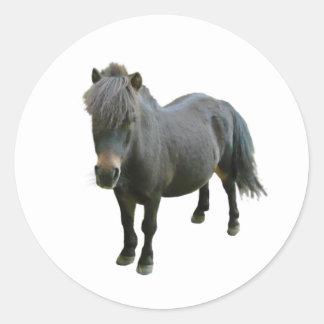 Cute Dartmoor Pony Classic Round Sticker