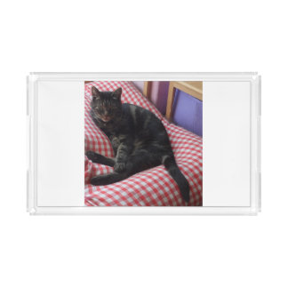 Cute Dave Small Vanity Tray
