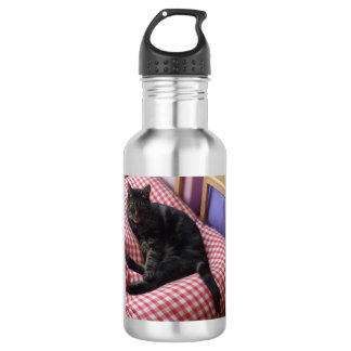 Cute Dave Water Bottle (532 ml), Stainless Steel