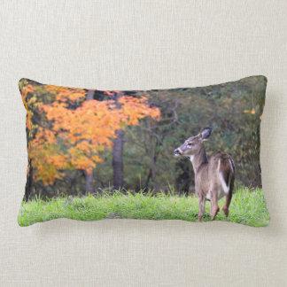 Cute Deer in the field Lumbar Pillow