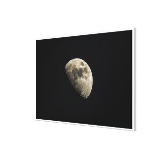 Cute Detailed Moon Canvas Print