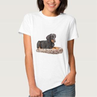 cute doberman pinscher puppy tee shirt