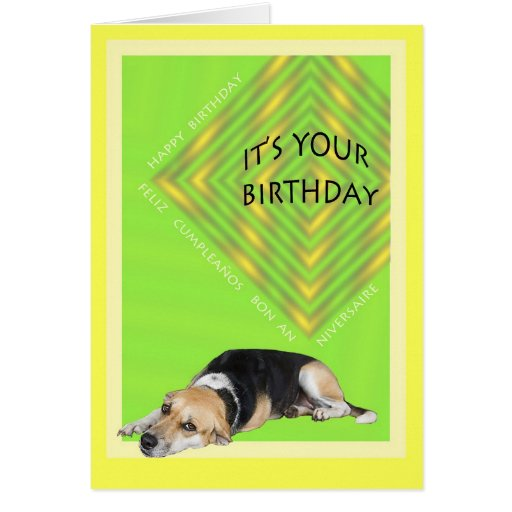 Cute Dog Birthday Card in 3 Languages