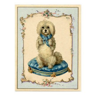 Cute Dog Blue Cushion Vintage Reproduction Postcard