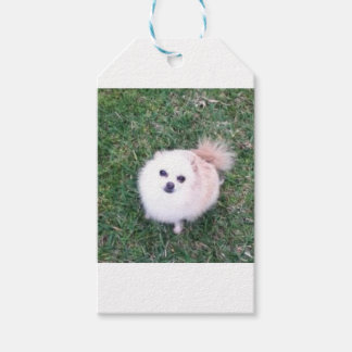 Cute Dog Gift Tags