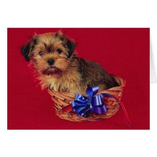 Cute Dog In Basket Birthday Card