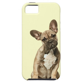 cute dog iphone 5 case