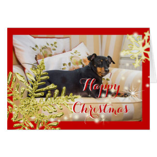 Cute Dog Manchester Terrier Festive Photo Card