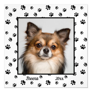 Cute Dog Name and Year with Photo Black Paw Prints Magnetic Card