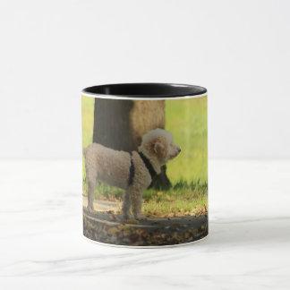 cute dog waiting for owner-beautiful nature animal mug