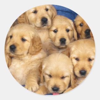 Cute Doggies Sticker :)