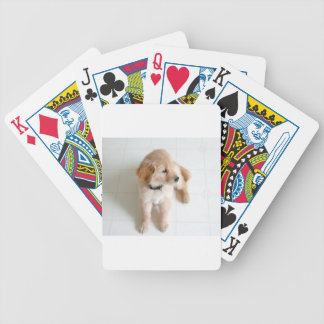Cute Doggy Bicycle Playing Cards