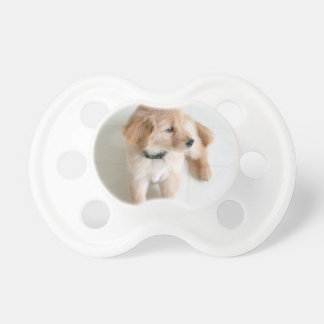 Cute Doggy Pacifier