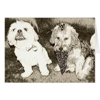 Cute dogs notecard -Shitzu and Yorkipoo