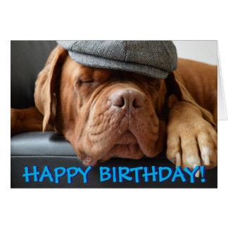Cute dogue de bordeaux photo birthday card