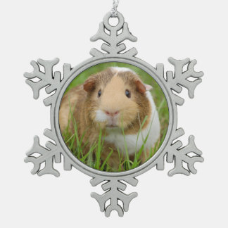 Cute Domestic Guinea Pig Snowflake Pewter Christmas Ornament