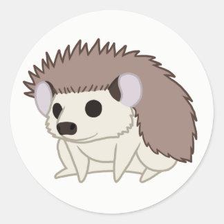 Cute Domestic Pygmy Hedgehog Classic Round Sticker