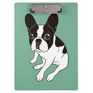 Cute double hooded pied Frenchie is chilling Clipboard