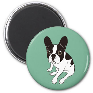 Cute double hooded pied Frenchie is chilling Magnet