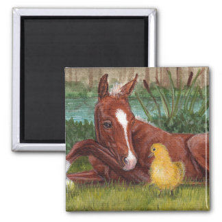 Cute duck chick & foal square magnet