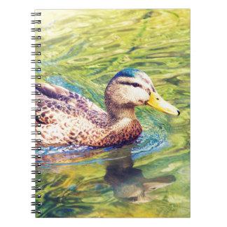 Cute Duck Swimming Notebook