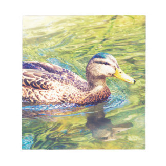 Cute Duck Swimming Notepads