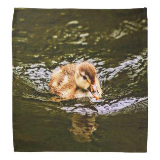 cute duckling kerchief
