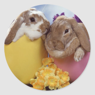 Cute Easter Bunny inside Eggs Classic Round Sticker