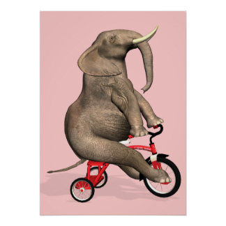 Cute Elephant Riding A Tricycle Posters