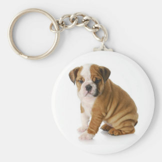 Cute English Bulldog Puppy Dog Keychain