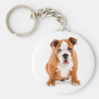 Cute English Bulldog Puppy Keychain