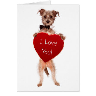 Cute falling in love greeting card