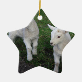 Cute Farm Ranch Baby Twins Sheep Lamb Ceramic Ornament