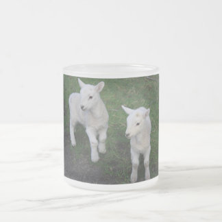 Cute Farm Ranch Baby Twins Sheep Lamb Frosted Glass Mug