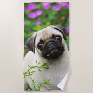 Cute Fawn Colored Pug Puppy Dog Face Pet Photo -.. Beach Towel