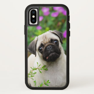 Cute Fawn Colored Pug Puppy Dog Face Pet Photo --_ iPhone X Case