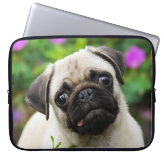 Cute Fawn Colored Pug Puppy Dog Face Pet Photo ___ Laptop Sleeve