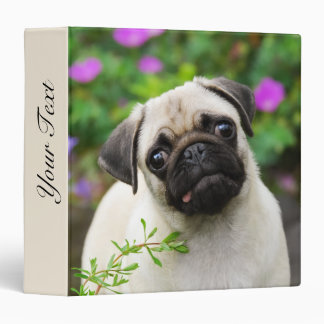 Cute Fawn Colored Pug Puppy Dog Face Pet Photo -__ Vinyl Binders