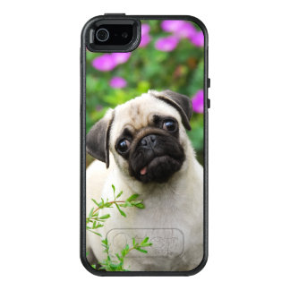 Cute Fawn Colored Pug Puppy Dog on Phone-protect OtterBox iPhone 5/5s/SE Case