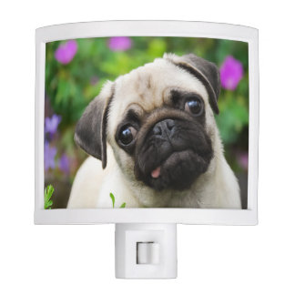 Cute fawn pug puppy night light