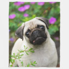 Cute fawn pug puppy, soft fleece blanket