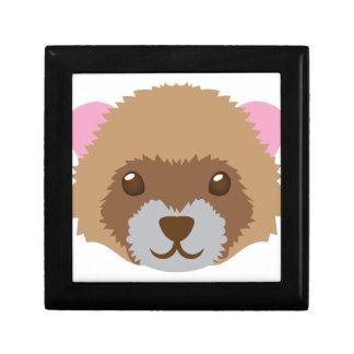 cute ferret face gift box