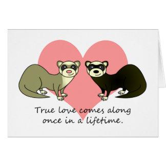 Cute Ferrets True Love Card