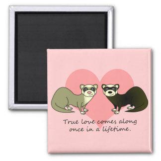 Cute Ferrets True Love Magnet