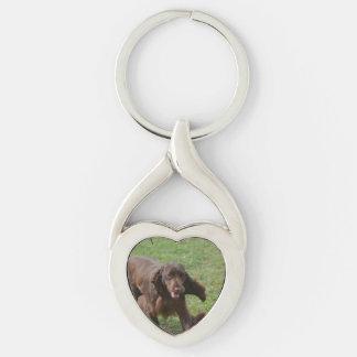 Cute Field Spaniel Keychain