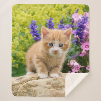 Cute Fluffy Ginger Baby Cat Kitten Flowers Pet '' Sherpa Blanket