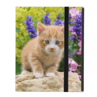 Cute Fluffy Ginger Baby Cat Kitten Flowers Photo - iPad Covers