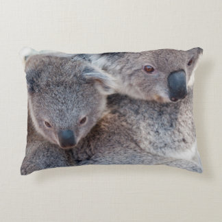 Cute Fluffy Grey Koalas Decorative Pillow